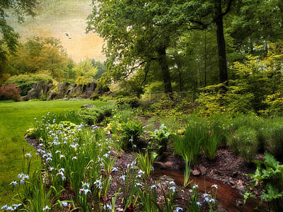 Irises Digital Art - Summer Creek by Jessica Jenney