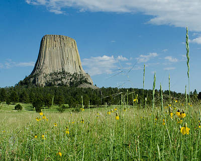 Photograph - Summer Day At Devils Tower by Dakota Light Photography By Dakota