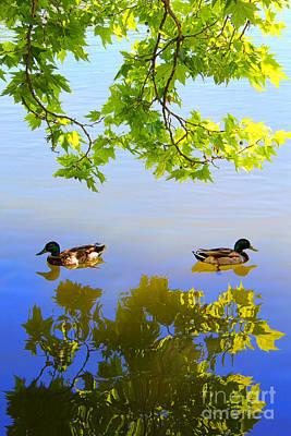 Summer Day On The Lake Art Print by Mariola Bitner