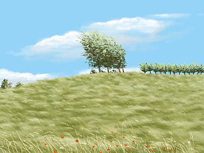 Field. Cloud Painting - Summer Day by Veronica Minozzi