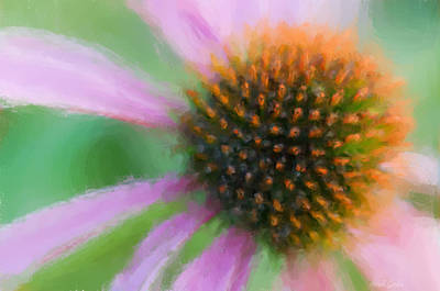 Photograph - Summer Dreams - Digital Chalk by Heidi Smith