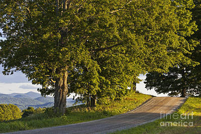 Photograph - Summer Evening View by Alan L Graham