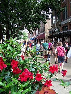 Photograph - Summer Farmers Market Knoxville by Jake Hartz