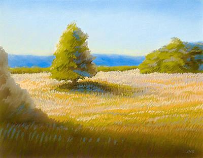 Pastel - Summer Field by Bruce Richardson
