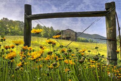 Summer Fields Art Print by Debra and Dave Vanderlaan