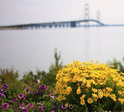Photograph - Summer Flowers At Mackinac Bridge by Dan Sproul