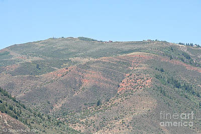 Photograph - Summer Foothills by Susan Herber