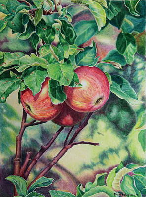 summer Fruit Art Print by Gina Gahagan
