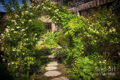Grafton Photograph - Summer Garden And Path by Elena Elisseeva