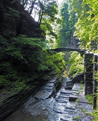 Photograph - Summer Gorge by Jessica Jenney