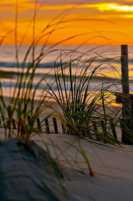 Sand Fences Photograph - Summer Grasses by Scott Hafer
