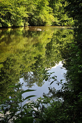 Photograph - Summer Green In A Stream by George Taylor