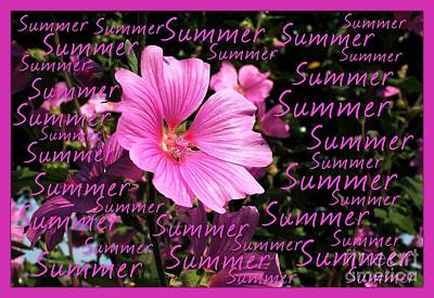 Photograph - Summer Greetings by Joan-Violet Stretch