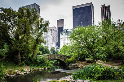 Photograph - Summer In Central Park by Sara Frank