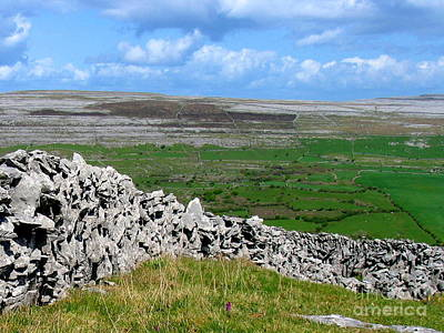 Photograph - Summer In The Burren by Suzanne Oesterling