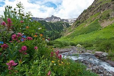 Photograph - Summer In The San Juans by Cascade Colors