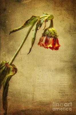 Painterly Photograph - Summer Is Gone by Veikko Suikkanen