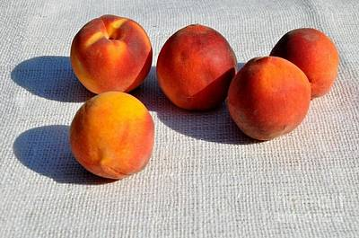 Photograph - Kentucky Summer Peaches by Maureen Cavanaugh Berry