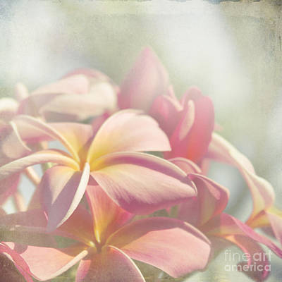 Summer Love Art Print by Sharon Mau