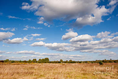 Kitchen Collection - Blue sky cloudscape rural landscape  by Arletta Cwalina
