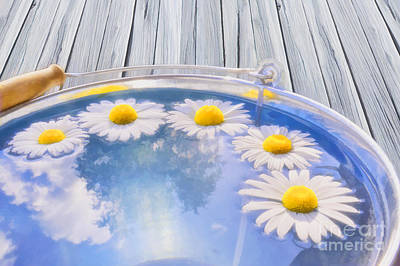 Daisies Digital Art - Summer Memories by Veikko Suikkanen