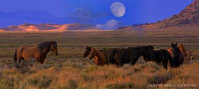 Photograph - Summer Moon  by Jeanne  Bencich-Nations
