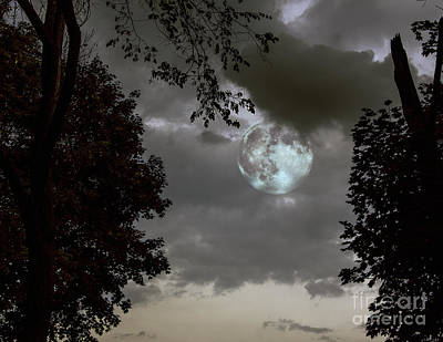 Priska Wettstein Pink Hues - Blue Moon by Lance Theroux