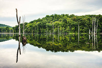Reflection On Pond Photograph - Summer Morning On Monksville Reservoir 2 by Gary Heller