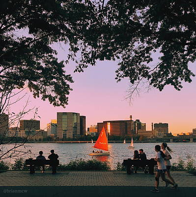 Photograph - Summer Night Activities On The Esplanade by Brian McWilliams