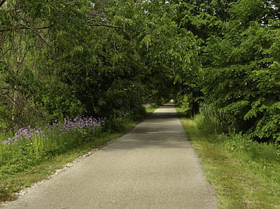 Still Life Photograph - Summer On Macomb Orchard Trail by LeeAnn McLaneGoetz McLaneGoetzStudioLLCcom