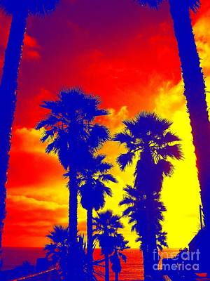 Digital Art - Summer Palms by Third Eye Perspectives Photographic Fine Art