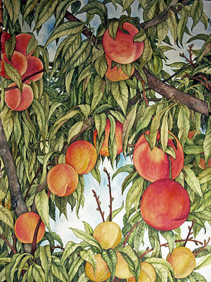Painting - Summer Peaches by Helen Klebesadel