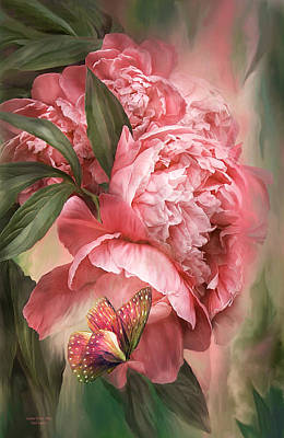 Summer Peony - Melon Art Print by Carol Cavalaris