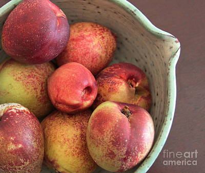 Photograph - Summer Pluots by Suzanne Oesterling