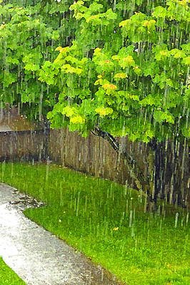 Photograph - Summer Rain Artistic by Laurie Tsemak