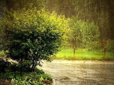 Gabii40 Photograph - Summer Rain by Gabi Siebenhuehner