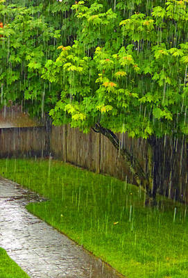 Photograph - Summer Rain by Laurie Tsemak