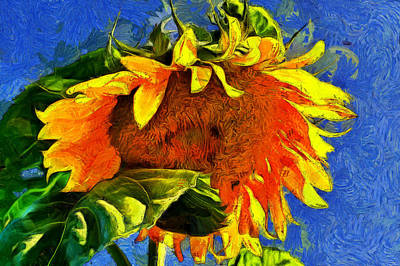 Photograph - Summer Smile by Jeff Folger
