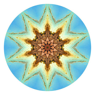 Photograph - Summer Solstice Mandala Without Words by Beth Sawickie
