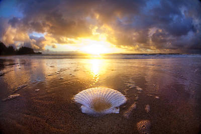 Seascape. Wave Photograph - Summer Solstice by Sean Davey