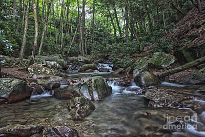 Photograph - Summer Stream In Ohiopyle by Jeannette Hunt