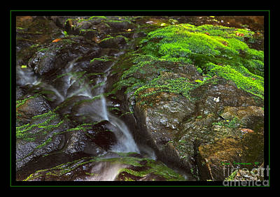 Photograph - Summer Stream Waterfall by John Stephens