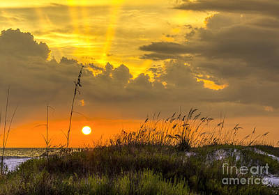 Rain Cloud Photograph - Summer Sun by Marvin Spates