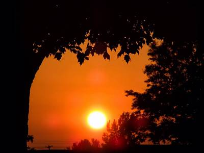 Central Il Photograph - Summer Sunrise Right Side by Thomas Woolworth
