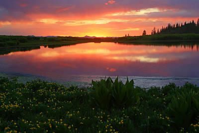 Summer Sunset Above Lake Creek. Art Print