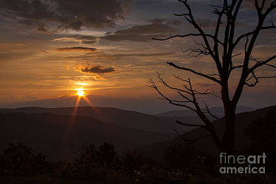 Photograph - Summer Sunset Along The Parkway by Mark East