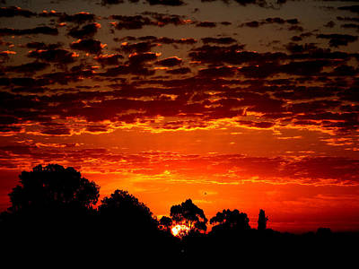 Photograph - Summer Sunset by Mark Blauhoefer