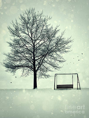 Photograph - Summer Swing Abandoned In Snow Beside Tree by Sandra Cunningham