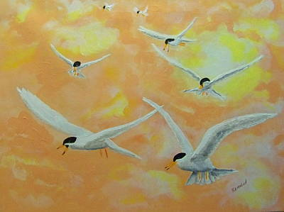 Summer Terns Art Print by Rich Mason