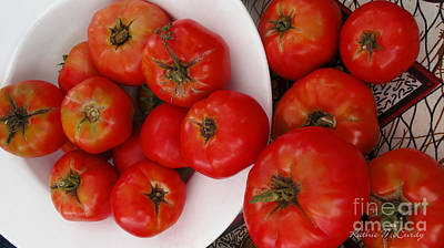Summer Tomatoes Art Print by Kathie McCurdy